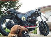 """Moto Guzzi """"MP1"""" Michelangelo Possidente"""