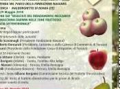 Frutticoltura: maggio 2010 parla alla Fondazione Navarra Malborghetto Boara (Fe)