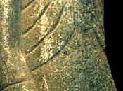 monolite pokotia