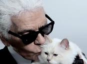 Choupette Karl Lagerfeld