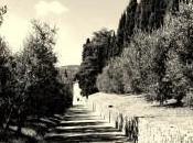 Giovanni Papini, Firenze campagna