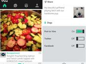 Download Vine Windows Phone