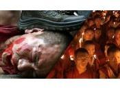 Facciamo sapere tibetani mondo dimenticato loro. persone sono tolte vita.