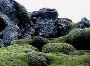 Islanda, terra elfi leggende