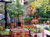 Isola Pepe Verde, miracolo giardino palazzi
