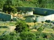 Grande Zimbabwe, Stonehenge africana