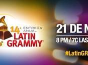 Latin Grammy 2013: Ecco premi vincitori