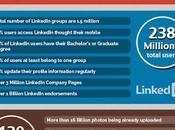 Social Media: numeri fatti 2013 Infografica