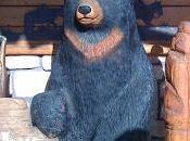 Tanto vuoto, niente alcol, troppi orsi