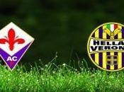 Fiorentina spettacolo vince contro l'Hellas Verona