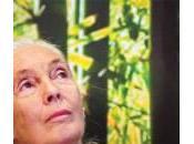 Rallentare l'invecchiamento combattere Alzheimer Parkinson