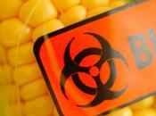 Contaminazioni alimentari: cibo uccide l'uomo