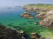 Saltee Islands, isole tesoro!