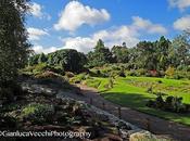 Edimburgo: giardino botanico