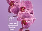 Radiant Orchid colore dell'anno 2014