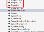 Emgu Windows Facial features detection