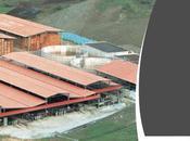 novità assoluta BioEnergy Italy 2014 Rota Guido Srl: l'impianto FreedoN