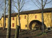 L'abbazia morimondo