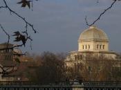 Roma: minacce ebrei luoghi simbolo, spedite teste maiale