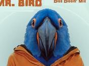 Iyecast Guestmix Ep19-mr Bird-digs Diggin (2014)