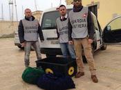 Siracusa: sequestrati 1000 ricci pescatori sportivi, 4.000 euro multa
