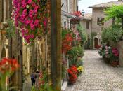 discover living Umbria.