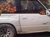 Siracusa: rubano chili arance, arrestati dopo lungo inseguimento disoccupati siracusani