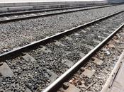 IDV: Petizione online eliminazione multe treno