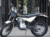 NEWS. Borile Motorcycles: Germania sceglie! Siglati accordi concessionari Berlino, Francoforte, Adenau