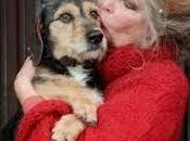 Brigitte bardot volpi