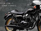 Cafe Style W800
