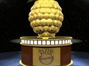 Razzie Awards 2014