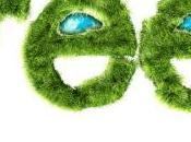 Green Economy Rapporto 2013