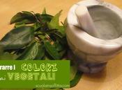 Come estrarre colori vegetali