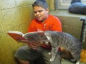 sharing: bambini leggono libri gatti