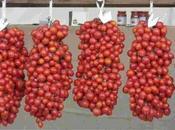 Siracusa: ruba pomodori all'Arenella, finisce domiciliari
