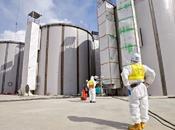 Fukushima anni dopo