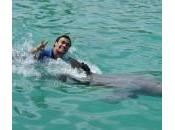 Fabio Fognini Ivanovic delfini Miami (foto)