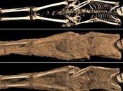 mummia tatuata esposta British Museum