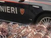 Siracusa: rubano chili rame all'interno dell'Isab Energy, colti fatto carabinieri