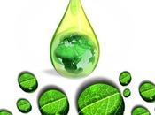 01/04/2014 Bioraffinerie terza generazione chimica verde