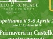 """Cortinametraggio presenta corti """"Primavera Castello"""""""