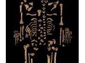 Egitto ritrovato antico completo scheletro affetto cancro