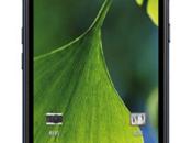 Philips W6618, 1600 stand-by conversazione batteria 5.300mAh