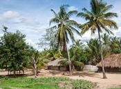 Fuori mondo Murrebuè: Mozambico selvaggio