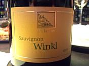 Sauvignon Blanc Südtirol-Alto Adige Terlaner 2013 Cantina Terlano