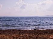 Pasquetta lago Bolsena