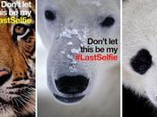 lancia campagna #LastSelfie affida Snapchat