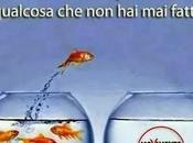 Grillo tremare Renzi: soffio