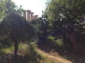 profumi Agrigento_